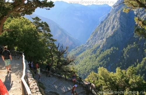 Критские леса